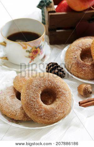 Baked Cinnamon sugar Apple cider Doughnuts / Donuts on dark moody background