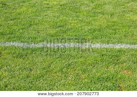 Top view of white horizontal stripe on the artificial soccer field. Artificial turf.