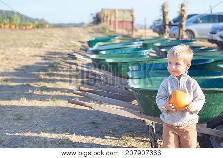 Little smiling boy holding pumpkin standing near row of wheelbarrows at farm field patch