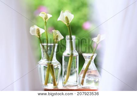 Curtains blowing gently across calla lilies in glass vases in a windowsill