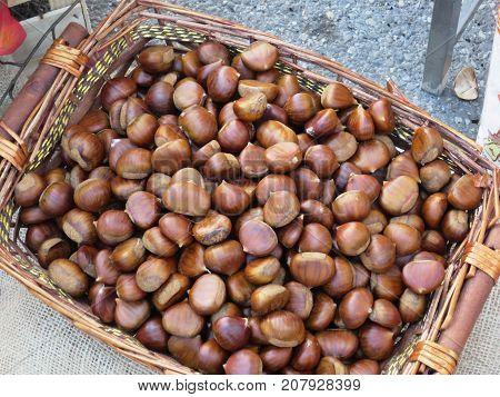chestnuts ready for sale chestnuts ready for sale