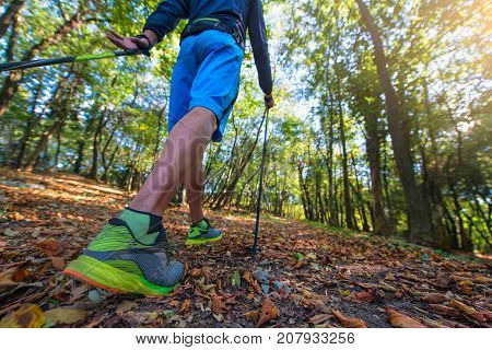 Nordic Walking Between The Leaves In The Woods In The Fall