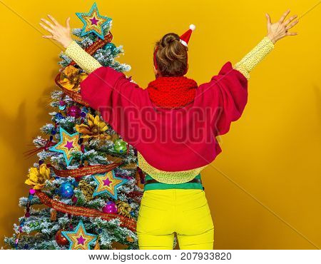 Seen From Behind Stylish Woman Near Christmas Tree Rejoicing