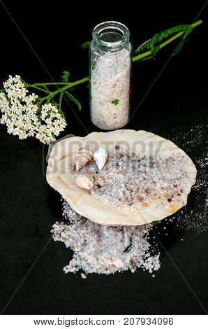 Still Life: Sea Salt, Seashells And Yarrow On Black Background