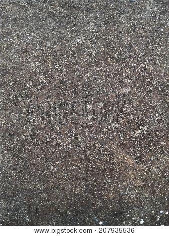 gray cement background texture. photo. texture. black