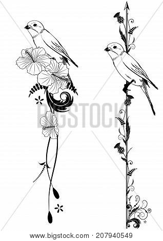 set of vector vertical deviders with birrd flowers of hibiscus and thistle in black and white