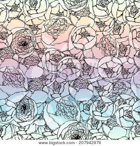 Seamless background pattern. Hand-drawn pion-shaped roses on blurred background.