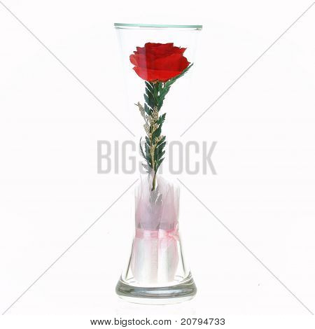 The Rose In A Glass