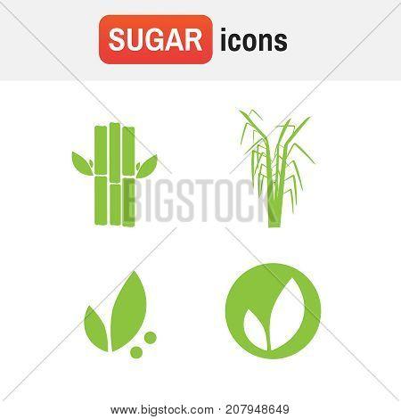 Sugar Cane Sugarcane. Sugar Cane Vector Icons