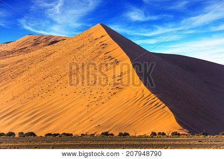 The most ancient in the world Namib Desert. Sharp border of light and shade on a dune crest at sunset. Namibia, South Africa. Sunset in the desert