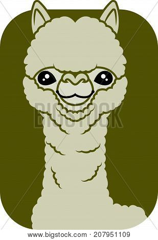 Cute big eyes alpaca character vector illustration