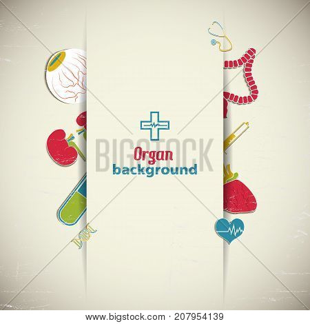 Flat medical background with colorful internal organs vector illustration