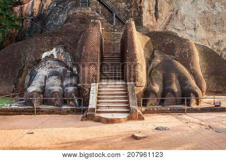 Lions Paw, Sigiriya Rock