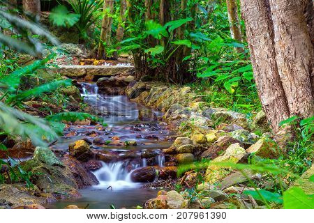 Rapid on the small river. Yalong Bay Tropic Paradise Forest Park, Hainan, China. A small waterfall inside the jungle.