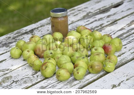 Home made apple sauce on a vintage garden table