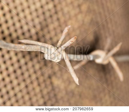 barbed wire. close-up . Photo of abstract background