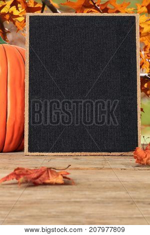Blank canvas frame surrounded by maple leaves and a pumpkin. Add your own Thanksgiving or Halloween text.