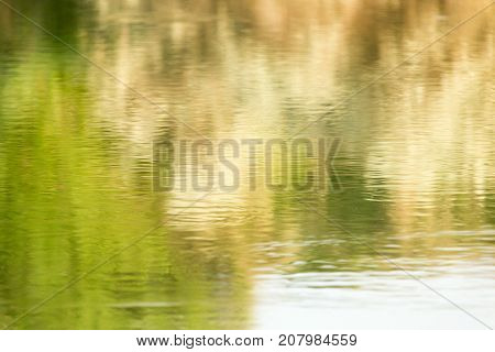 reflection of trees on water . In the park in nature