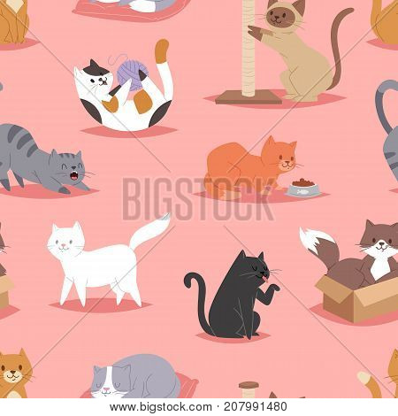 Different cats kitty play defferent pose character illustration vector seamless pattern background . Cartoon funny cats play