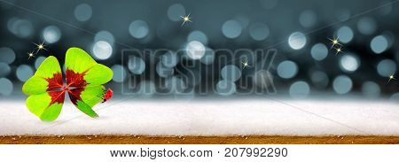 Gray holiday bokeh background with four leaf clover and ladybird. Blurred Lights Abstract background and snow.
