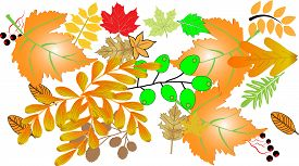 Happy Thanksgiving Day. Celebrations background with hanging leaves