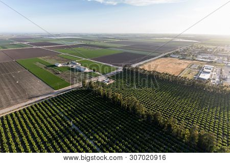 Afternoon aerial view of coastal farm fields in Ventura County, California.