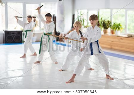 Boys And Girls Studying Martial Art Practicing At The Weekend