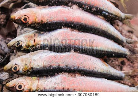 Roasted Sardines On A Spit In Southern Spain In Summer