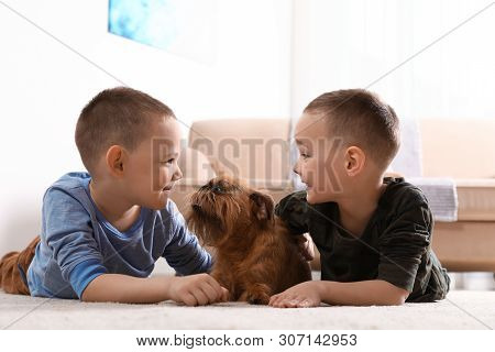 Portrait of cute boys with funny Brussels Griffon dog at home. Loyal friends poster