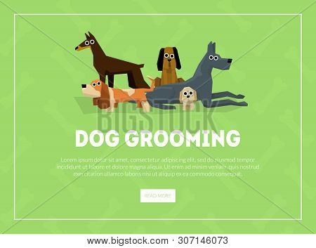 Dog Grooming Banner, Landing Page Template, Pet Grooming Service Salon Vector Illustration