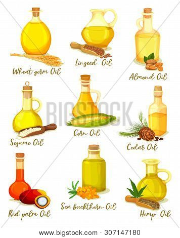Set Of Isolated Bottles Or Jars With Different Oil Types. Wheat Germ, Linseed And Almond, Sesame And