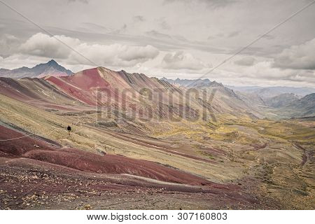Rainbow Mountain Or Vinicunca In Southern Peru. Lonely Man Doing Trekking