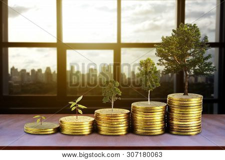 Gold Coins Pile Stack And Growing Money And Grow Trees That Grow Up On City Background, Saving Money