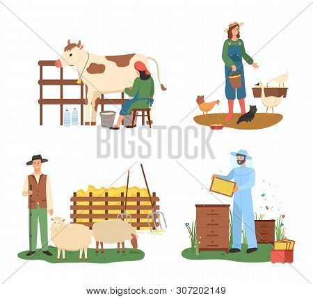 Domestic animals and people tending for pets vector, cow and sheep, woman feeding chicken hen. Beekeeping male wearing uniform, beekeeper flat style poster