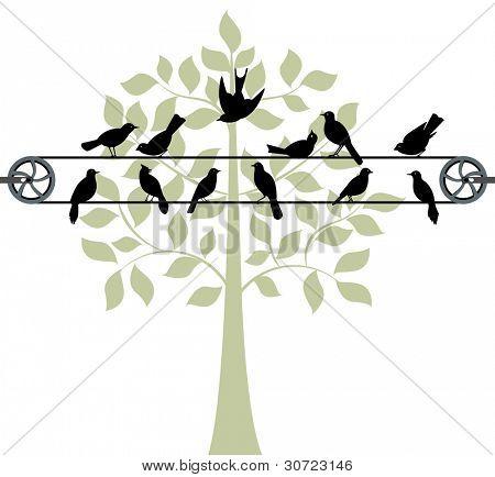 Birds sitting on clothesline