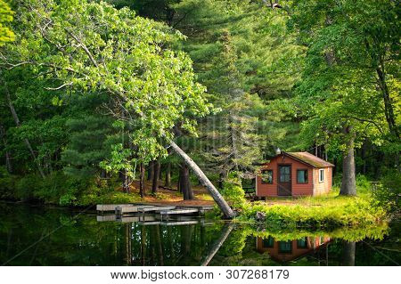 Summer Home Cabin In The Woods At The Lake