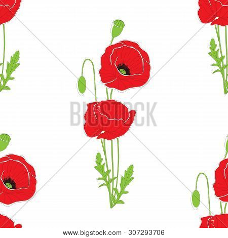 Red Poppy Flowers On White Background. Seamless Background Pattern. Can Be Used For Textile, Wallpap