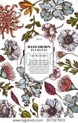 Card Design With Colored Japanese Chrysanthemum, Blackberry Lily, Eucalyptus Flower, Anemone, Iris J