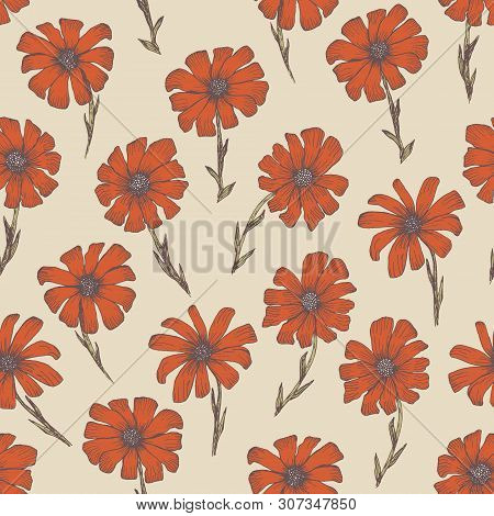 Tender Warm Seamless Pattern With Red And Orange Chamomile Flowers. Retro Hand Drawn Illustration Of