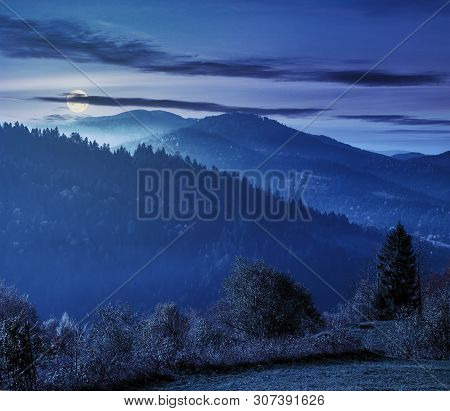 Beautiful Countryside In Mountains At Night In Full Moon Light. Trees On The Edge Of A Grassy Meadow