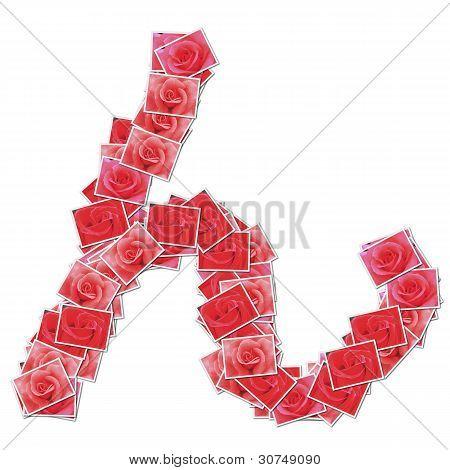 Japanese Characters hiragana, made from rose photo.