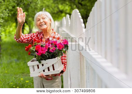 Beaming Elderly Lady Waving To Her Neighbor Standing Near Fence
