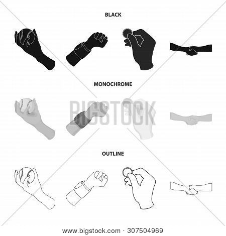 Vector Illustration Of Animated And Thumb Symbol. Collection Of Animated And Gesture Vector Icon For