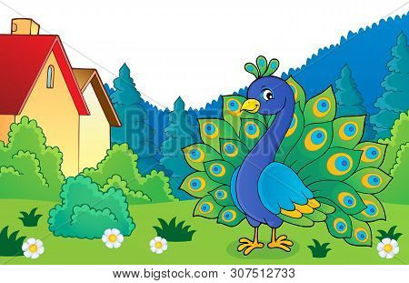 Peacock Theme Image 4 - Eps10 Vector Picture Illustration.