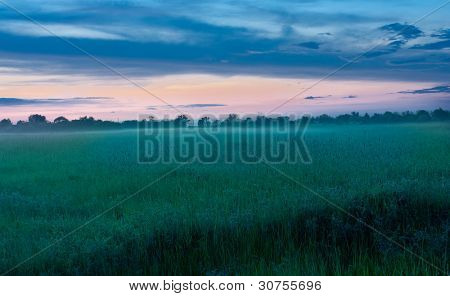 early morning in steppe