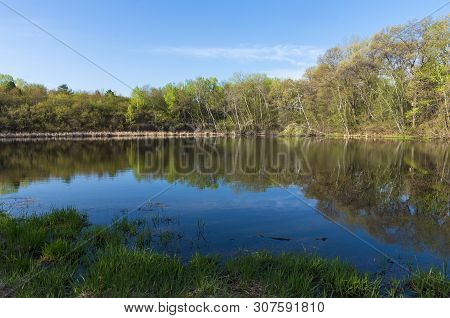 Forest Across Pond And Reflections Atop Water During Spring At Salem Hills Park In Inver Grove Heigh