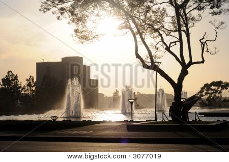 Fountains In The Sun