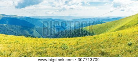 Wonderful Summer Panorama In Mountain. Green Grassy Slopes Of Alpine Meadows Covered In European Blu