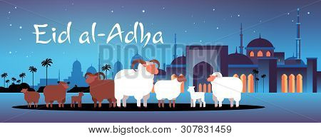 happy Eid al-Adha mubarak muslim holiday concept white and black flock of sheep festival of Sacrifice nabawi mosque building night cityscape flat full length horizontal poster