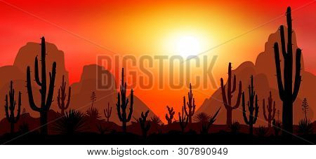 Sunset In The Desert. Silhouettes Of Stones, Cacti And Plants. Desert Landscape With Cacti. The Ston